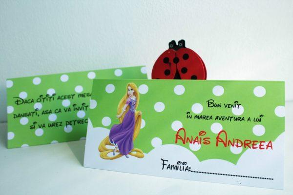 Plic de bani pentru botez cu Printesa Rapunzel 2