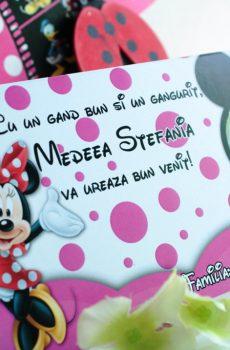 Plic de bani cu Minnie Mouse si poza copilului