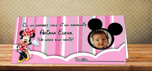 Plic de bani personalizat pentru botez cu fotografie si Minnie Mouse