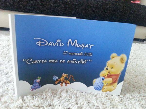 cartea amintiri cu winnie the pooh 4