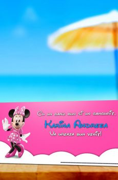Plic de bani cu Minnie Mouse model Karina