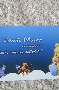 Carte pentru amintiri la botez cu Winnie the Pooh