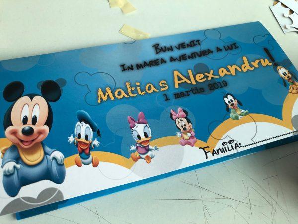 plic de bani cu mickey mouse