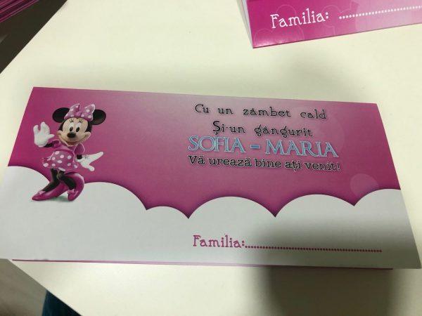 Set invitatii si plicuri de bani pentru botez cu Minnie Mouse 3