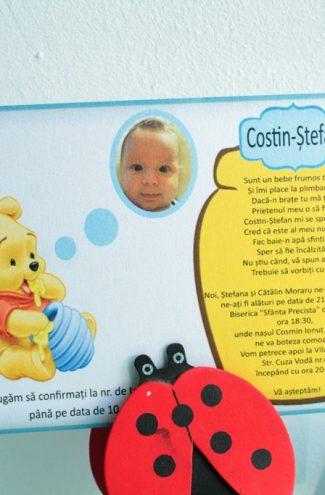Invitatii pentru cumatrie sau botez cu Winnie the Pooh