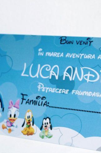 Plic de bani cu Mickey Mouse model Thomas