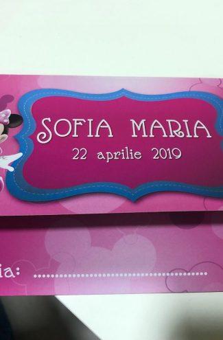 Set invitatii si plicuri de bani pentru botez cu Minnie Mouse