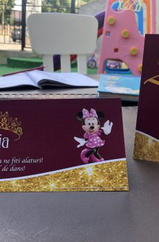 plic de bani cu Minnie Mouse