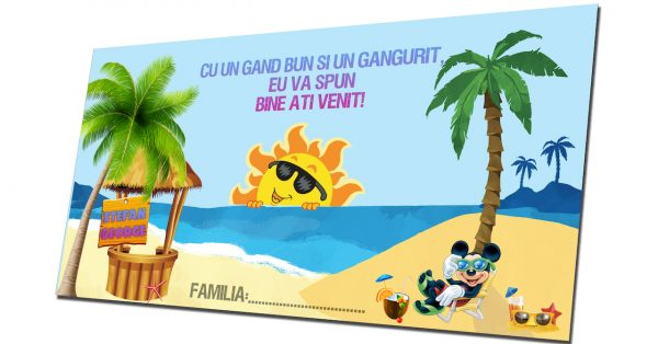 plic de bani mickey mouse summer